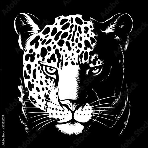 Jaguar in darkness Poster Mural XXL