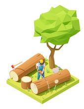 Vector Isometric Lumberjack In...