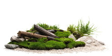 Green Moss With Decorative Rocks, Branches And Grass Isolated On White Background