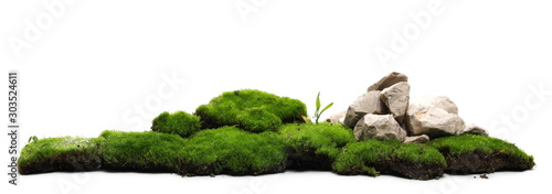 Fototapeta Green moss with decorative rocks isolated on white background obraz