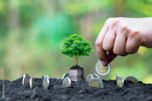 The hands of people who grow coins and trees that grow on coins, financial concepts.