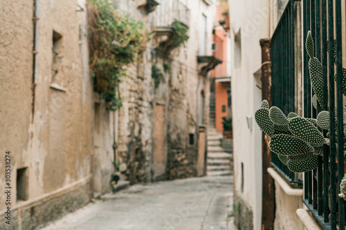 selective focus of green cactus near narrow street in ragusa, italy Fototapeta
