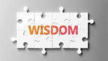 Wisdom Complex Like A Puzzle -...