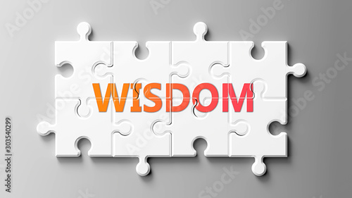 Wisdom complex like a puzzle - pictured as word Wisdom on a puzzle pieces to sho Canvas