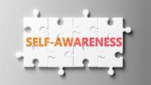 Self Awareness Complex Like A ...