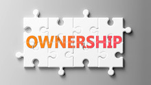 Ownership Complex Like A Puzzl...