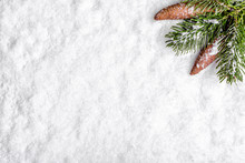 Christmas Tree Branch With Pine Cones In Snow, Christmas White Background, Flat Lay, Top View