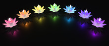 Lotus Candle Of Chakra Colors