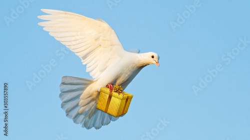 white dove carries a gift for the feast Canvas-taulu
