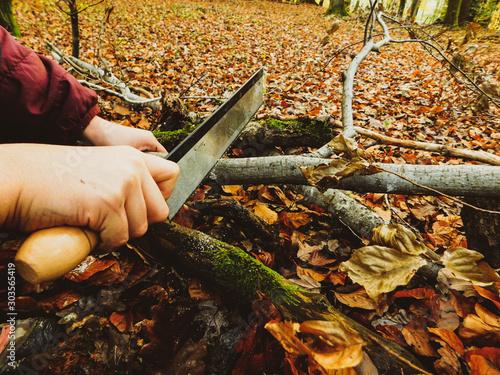 main d'enfant qui coupe une branche avec une scie en automne Canvas Print