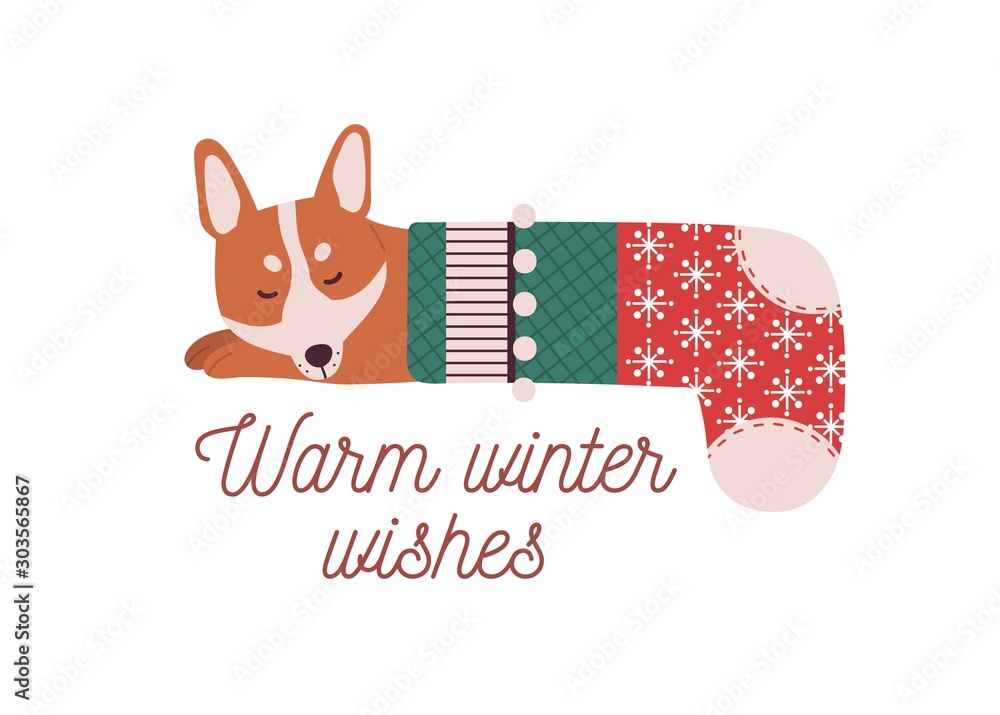 Fototapety, obrazy: Cute little dog sleeping in Christmas stocking. Warm winter wishes vector greeting card design element. Cartoon canine pet dozing isolated illustration. Beautiful Christmas time postcard design.
