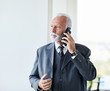 senior businessman portrait office executive mobile phone
