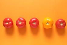 Yellow Tomato Among Red Ones O...