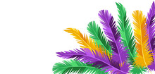 Card With Feathers In Mardi Gras Colors.