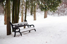 Park Bench Covered By Snow In Winter. Snowy Cold Weather. Winter Morning After Snowfall