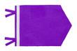 canvas print picture - Purple Pennant Flag