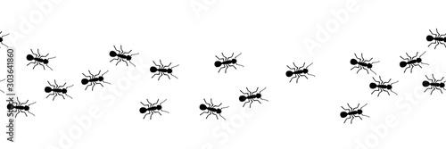 Worker ants marching Wallpaper Mural