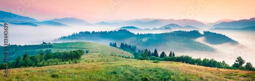 Fototapeta Foggy morning panorama of mountains valley. Splendid summer sunrise in Carpathian mountains, Rika village location, Transcarpathian, Ukraine, Europe. Beauty of nature concept background. obraz