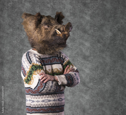 wild boar studio portrait, man with boar head Wall mural