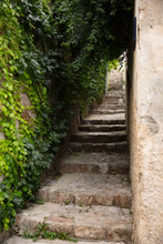 Steps Go Up An Old Alleyway With Ivy
