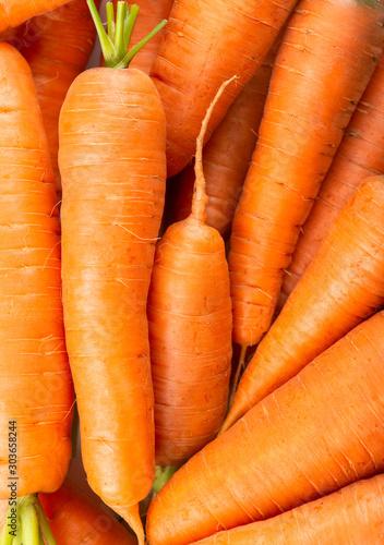 Fotografía  Carrot background. Fresh carrot. Fresh ripe vegetables