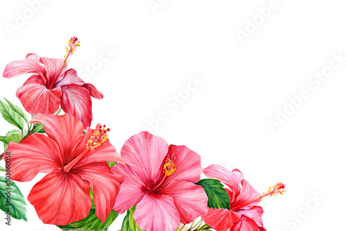 canvas print motiv - Hanna : Frame of tropical flower hibiscus, watercolor botanical illustration, hand-drawn, greeting card with place for text. Invitation to a wedding, celebration, birthday.