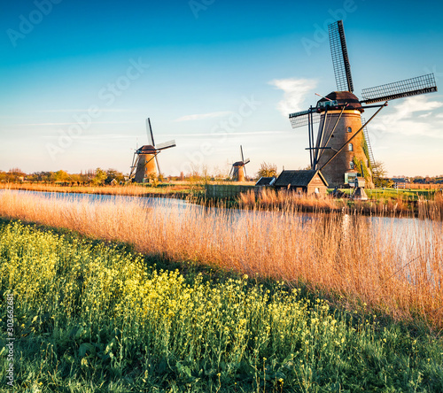 Famous windmills in Kinderdijk museum in Holland. Colorful outdoor scene of Netherlands, Europe. UNESCO World Heritage Site. Traveling concept background.