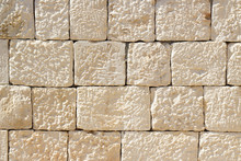 Texture Of Sunlit Coquina (limestone) Tiles.