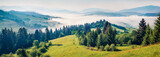 Panoramic summer view of Carpathian mountains. Impressive morning scene of Borzhava mountain ridge, Transcarpathian, Ukraine, Europe. Beauty of nature concept background.