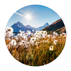 Panel Szklany Góry Round icon of nature with landscape. Sunny morning scene of Bachalp lake (Bachalpsee) with feather grass flowers, Swiss alps, Grindelwald location, Switzerland, Europe. Photography in a circle.