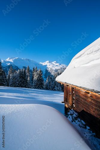 Fototapety, obrazy: Verschneite Winterlandschaft