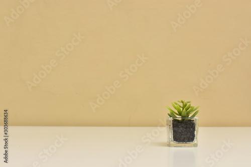 Photo Maceta pequeña de cristal con plantita