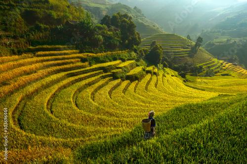 Foto auf AluDibond Reisfelder Bright morning of rice terraces in Mu cang chai,Yenbai,Vietnam.