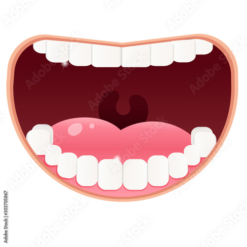 Fototapeta Color image of open mouth with white clean teeth on white background