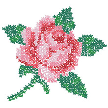 Cross Embroidered Rose. Color Image Of On A White Background. Needlework. Vector Illustration For Handcraft.