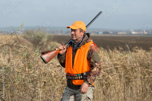 Fototapety, obrazy: A man with a gun in his hands and an orange vest on a pheasant hunt in a wooded area in cloudy weather. Hunter with dogs in search of game.