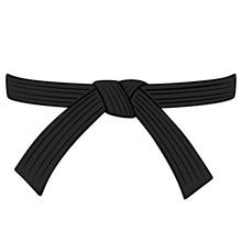 Black Belt - A Cartoon Illustr...