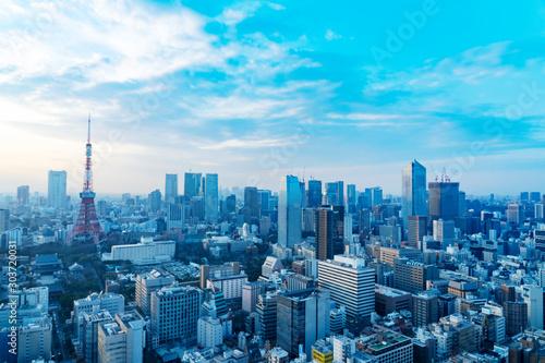 Obraz 都市風景 東京 - fototapety do salonu