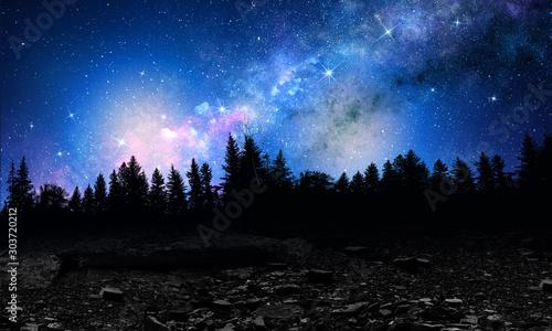 Foto auf Leinwand Schwarz Silhouette of night forest . Mixed media
