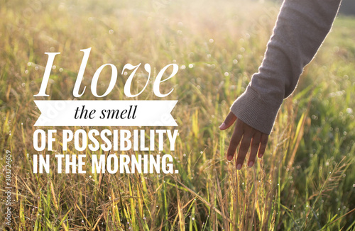 Fototapeta Inspirational motivational quote - I love the smell of possibility in the morning. With warm morning light over the field & young woman hand touch the leaves of paddy in field background.  obraz