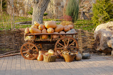 An Old Cart With A Harvest Of ...