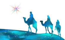 Christmas Star Camels With The...