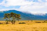 Panorama of Ngorongoro crater National Park with the Lake Magadi. Safari Tours in Savannah of Africa. Beautiful landscape scenery in Tanzania, Africa