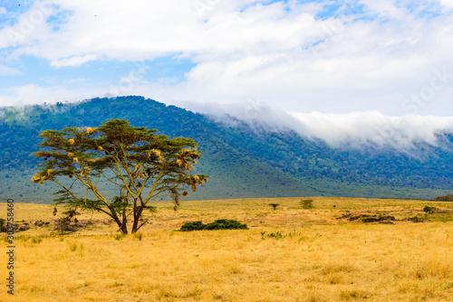 Panorama of Ngorongoro crater National Park with the Lake Magadi Fotobehang