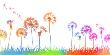 Colorful Dandelions. Abstraction Of A Meadow With Rainbow Flowers. Vector Illustration