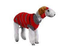 Bedlington Terrier Dog Dressed...