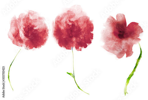 Watercolor flowers , isolated on white background - 303783423