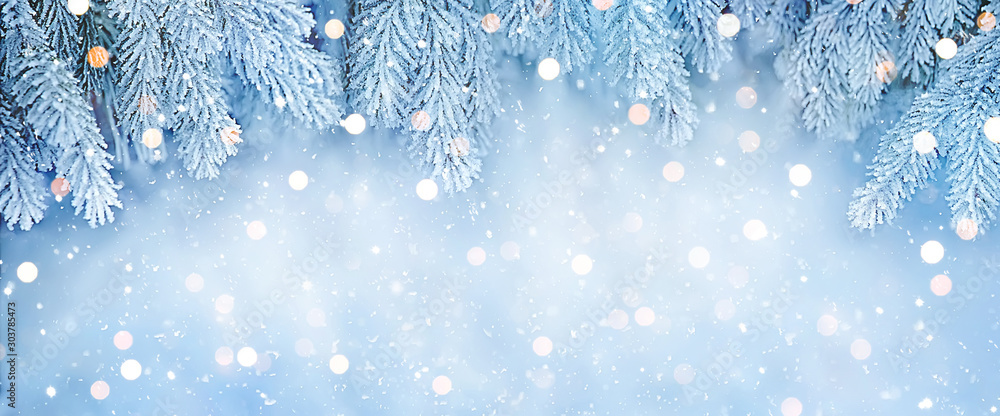 Fototapeta Wide Angle Beautiful Christmas Background