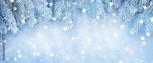 Obraz Wide Angle Beautiful Christmas Background - fototapety do salonu