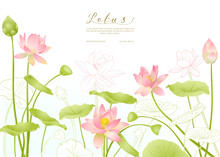 Lotus Flowers. Template For We...